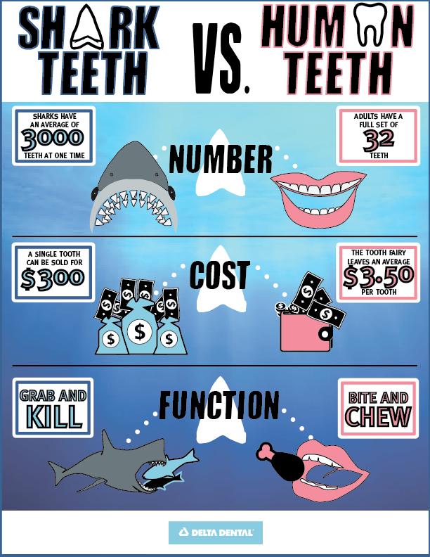 Sink Your Teeth Into Shark Week Hawaii Dental Service Blog